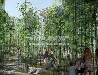 上第MOMA 实景图 板桥竹境