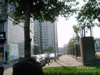金都・杭城 实景图 项目实景