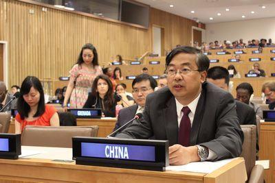 中国代表团团长王民