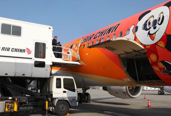 工作人员将大熊猫移出客舱至升降平台车