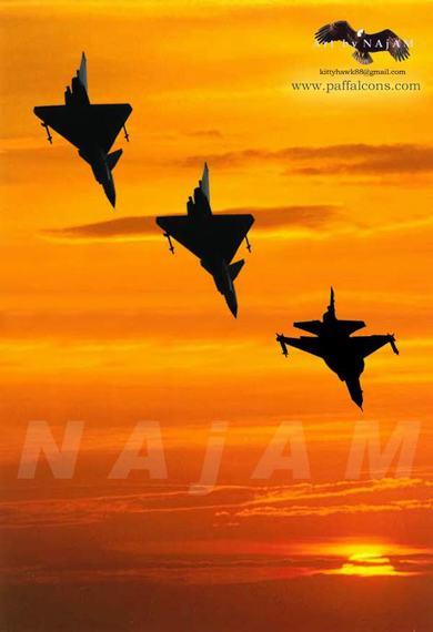 巴网站上刊出的巴空军枭龙和歼十伴飞的宣传画