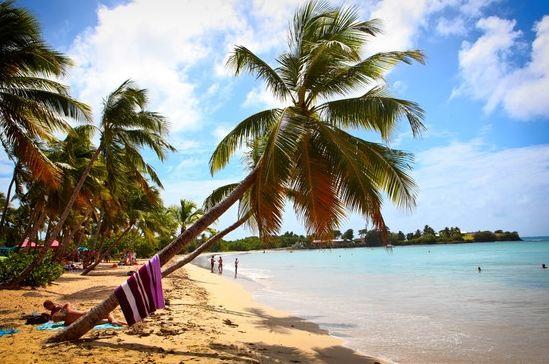 华尔街日报:大西洋马提尼克岛唯美4日游(组图)