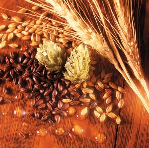 水、啤酒花、酵母以及能提供稳定淀粉源的粮食