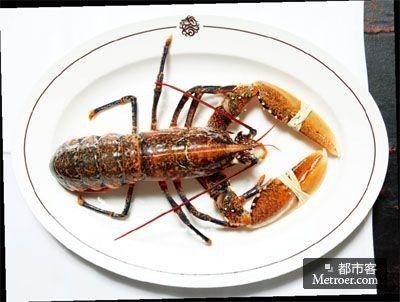英国花龙虾