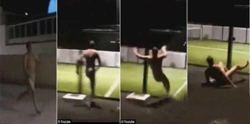 英国男子裸奔撞上玻璃墙后被弹回