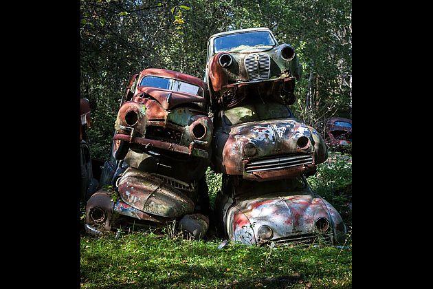 融入大自然 瑞典丛林深处的汽车坟场