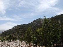 哈里哈图森林公园