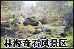 林海奇石风景区
