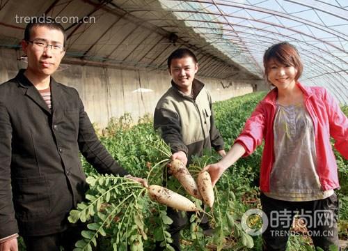 京郊好选择:农家乐