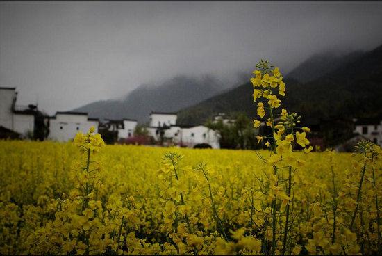 中国最美乡村婺源