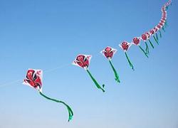 老北京风筝的种类