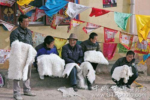 一些商贩从牧区购买羊皮,加工后在市场兜售(郑云峰摄)
