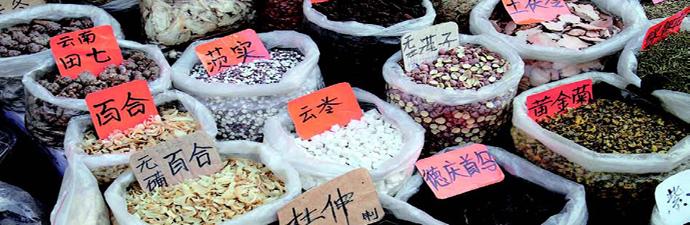 生猛的原料和生猛的态度 粤菜馆的鲜美精致