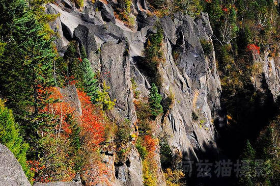 深山峡谷中的秋意饱含着我们对秋天的全部想象
