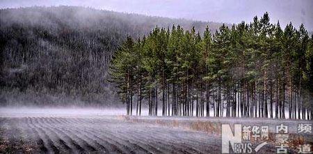 新浪旅游配图:漂亮的冬景 图片来源:新华网