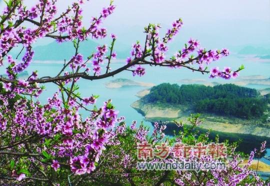 桃花岛美景
