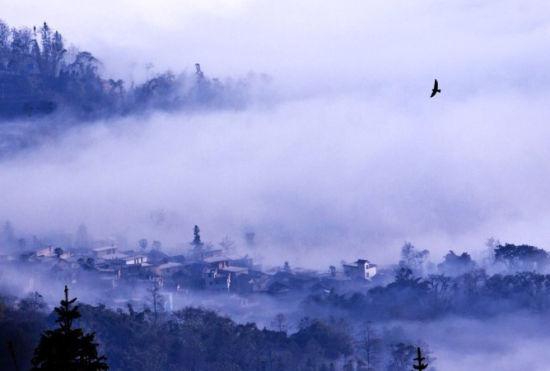 云雾缭绕的世界