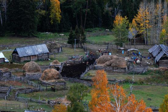 新浪旅游配图:牧民的小屋 摄影:肉头阿咚