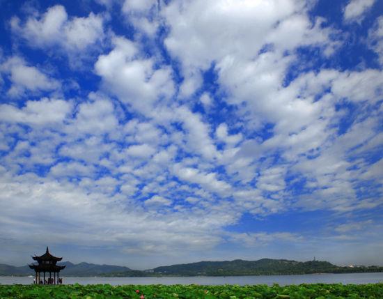 新浪旅游配图:西湖夏景 摄影:杭居易