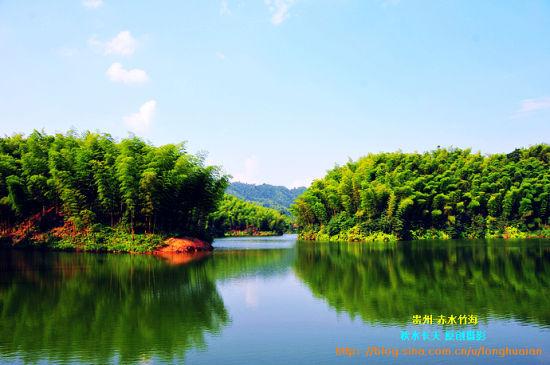新浪旅游配图:竹海森林公园 摄影:秋水长天