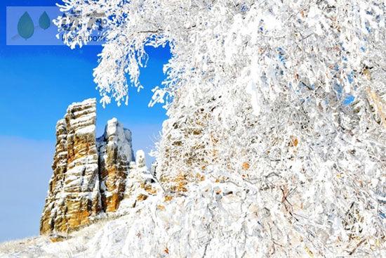 雪后石林 作者:蓝天下的云