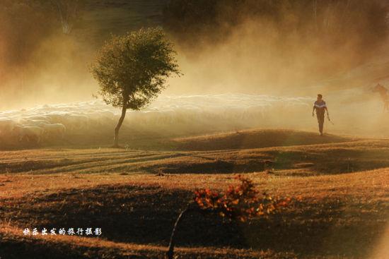 新浪旅游配图:坝上如油画般美丽 摄影:快乐出发