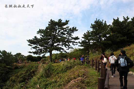 济州岛的羊肠小道