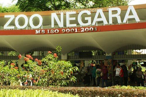 马来西亚国家动物园