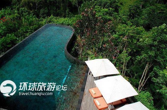 置身泳池中,可直面巴厘岛最美的丛林