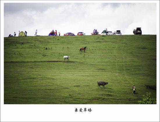 兼爱草场 图/老桨 新浪博客