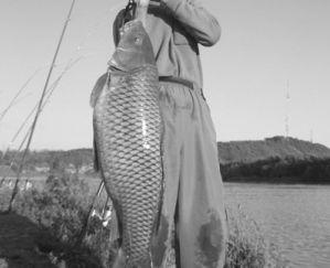 28斤大鱼