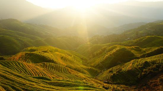日出下的龙脊梯田