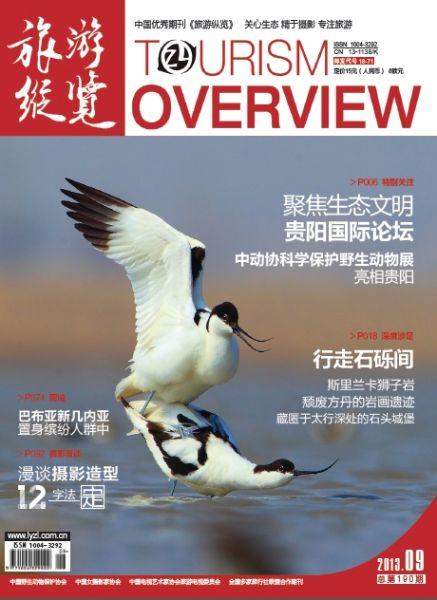 封面阅读:《旅游纵览》2013年9月刊