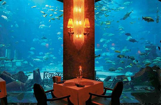 沉入深海的餐厅