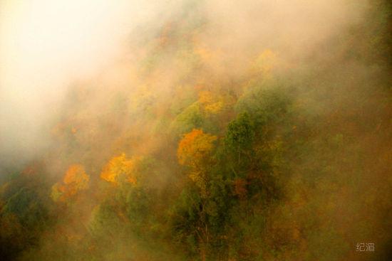 缆车外的风光,雾气腾腾