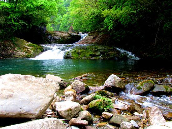 黎坪国家森林公园