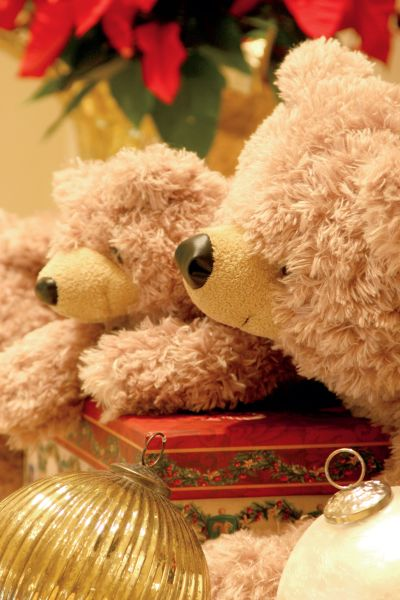 泰迪熊下午茶