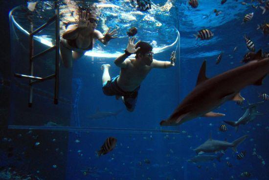 旅游:新加坡水上探险乐园花样多