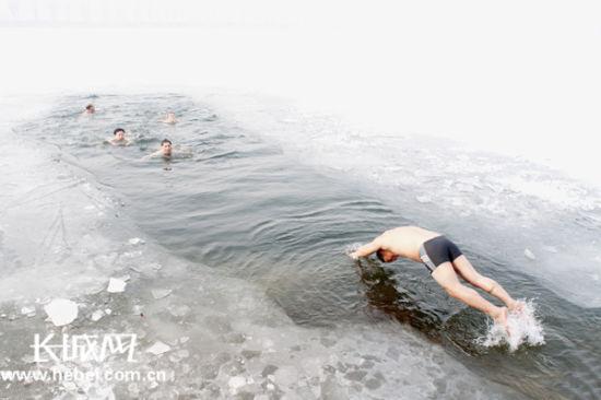 新浪旅游配图:冬泳爱好者在白洋淀游泳 摄影:张申军