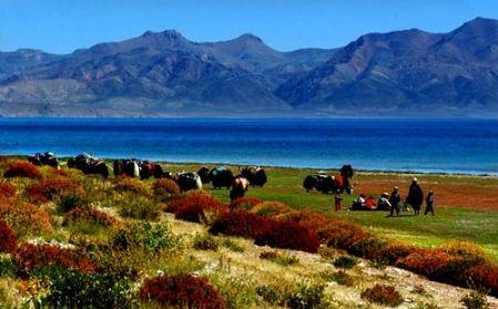 西藏文部湖