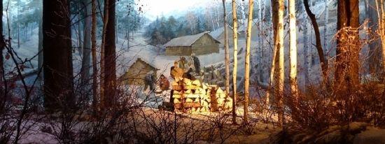 伊春森林博物馆展品