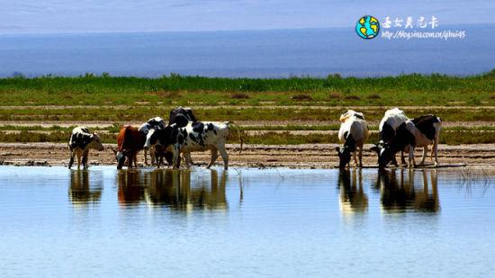 环游东天山世界内陆最低艾丁湖