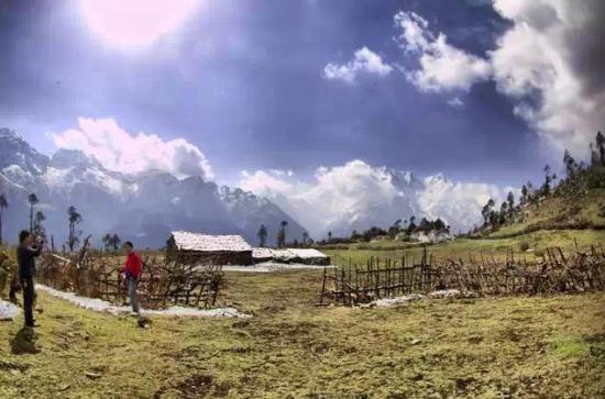 沧林农场风景