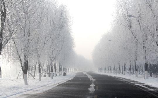 沈阳 正文    都说好的风景总在路上,但也有一些风景的美,只有在冬天