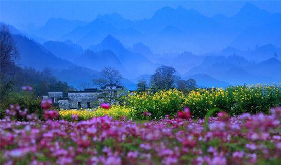 图源:婺源旅游局