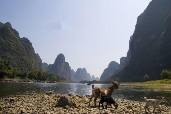漓江沿岸的自然风光 图:新浪博主/享受孤独