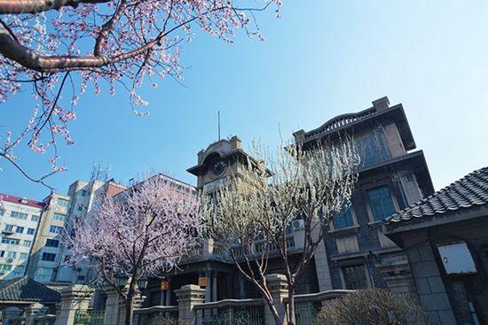 以张氏帅府为中心,分布着当年留下的诸多民国时期建筑,每当春季来到,樱花盛开,古老而沧桑的建筑更是显得富有岁月的美感。张氏帅府是由东院、中院、西院和院外建筑等四个部分组成的庞大建筑群,其中既有中国传统风格的四合院、水榭亭台的帅府花园,又有欧式风情的大青楼、边业银行、红楼群,以及中西合璧式的小青楼和赵四小姐楼。1991年,张氏帅府被列为我国优秀近代建筑群。