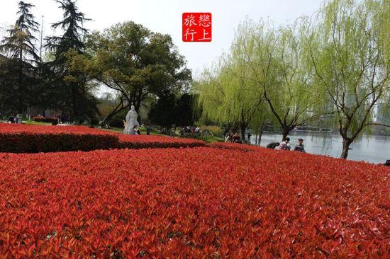 玄武湖公园, 作者@恋上旅行啦