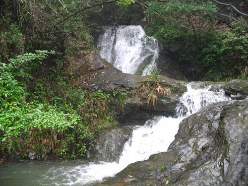 森林与瀑布完美邂逅水墨丹青玉龙谷