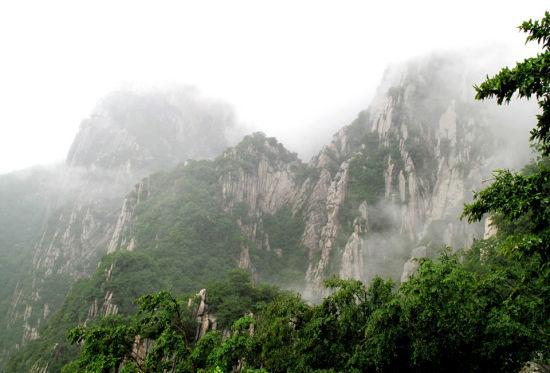 嵩山国家森林公园(图来自网络)